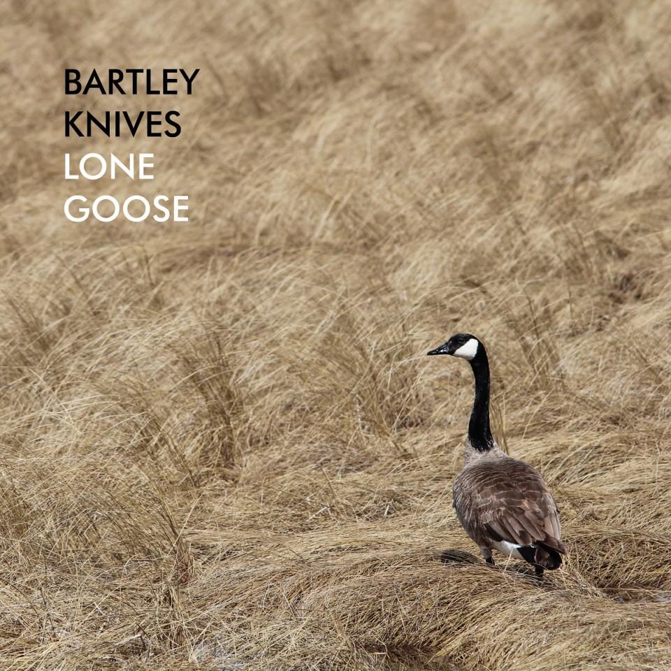 Lone Goose