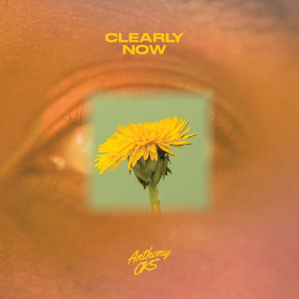 Clearly Now - Single