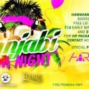 Punjabi EDM Night