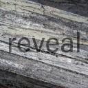 Concert 1: Reveal