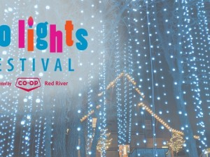 Zoo Lights Festival