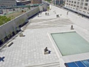 Rooftop Sculpture Garden
